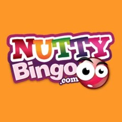 Nutty Bingo website